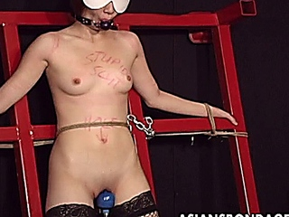 Passionate Japanese gal gets bound and whipped